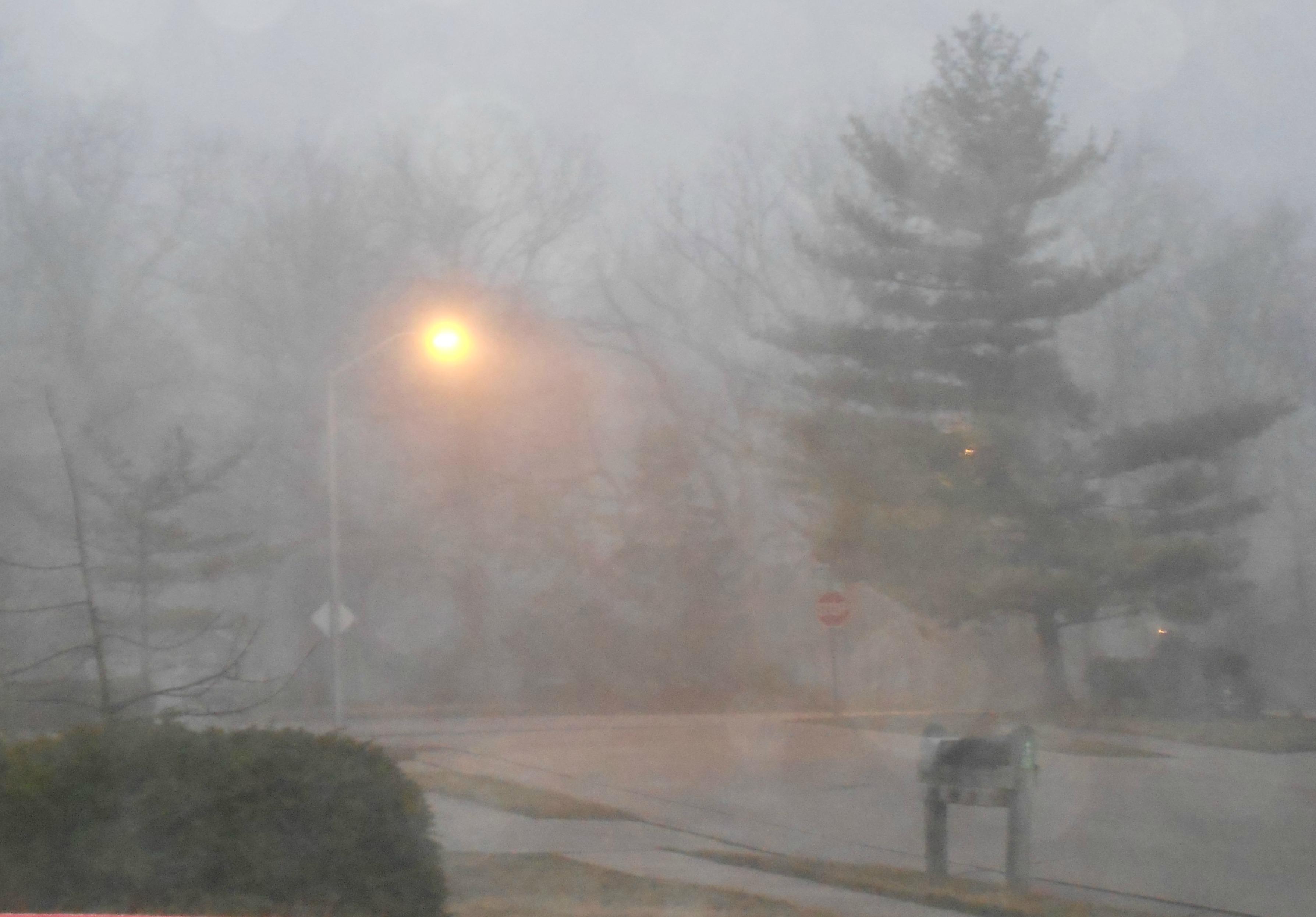 5 am and foggy
